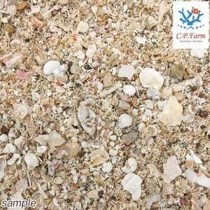 C.P.Farm直送 アラゴナイトサンド 軽洗浄済み 24kg(約19.2L)送料込み(1個口相当) 海水用品 底砂|chanet