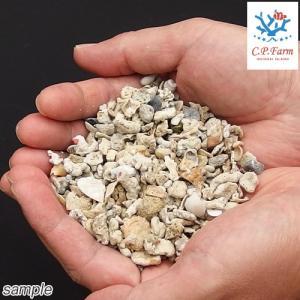 C.P.Farm直送 クラッシュコーラル・シェルピース 軽洗浄済み 18kg(約14.4L) サンゴ砂・貝殻ミックス(0.8個口相当)別途送料|chanet