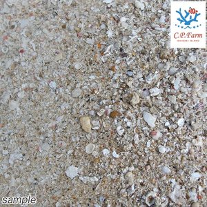 C.P.Farm直送 ライブアラゴナイトサンド 10kg(約8L)(0.32個口相当) バクテリア付き サンゴ砂 底砂 別途送料|chanet