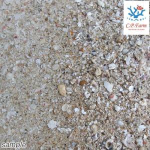 生産者直送 ライブアラゴナイトサンド 18kg(約14.4L)(0.8個口相当) バクテリア付き サンゴ砂 底砂 別途送料|chanet