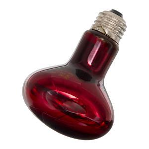 ZOOMED 赤外線保温電球 インフラレッドヒートランプ 75W 爬虫類 保温球
