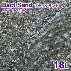 sfset ◎ Bact Sand ばくとさんどシリーズ 海水 底砂 ma_livesand ばくと...