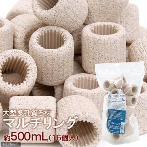 大型多孔質ろ材 MULTI RING(マルチリング) 約500mL(16個入) 関東当日便|chanet