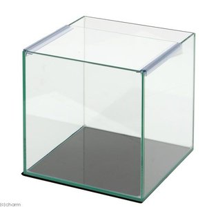 25cmキューブ水槽(単体)アクロ25N(25×25×25cm)オールガラス水槽 Aqullo アクアリウム用品 お一人様2点限り 関東当日便|chanet
