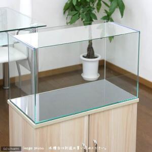 60cm水槽(単体)アクロ60N(60×30×36cm)オールガラス水槽 Aqullo アクアリウム用品 お一人様1点限り 関東当日便|chanet