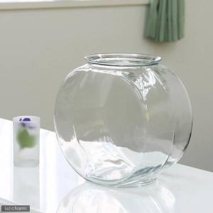 おしゃれなガラス製金魚鉢 太鼓鉢 大(7.6リットル) 関東当日便|chanet