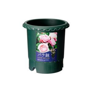 リッチェル バラ鉢 ダークグリーン 6号 φ1...の関連商品3