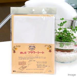 押し花フラワーシート(260×360mm10枚) 関東当日便|chanet