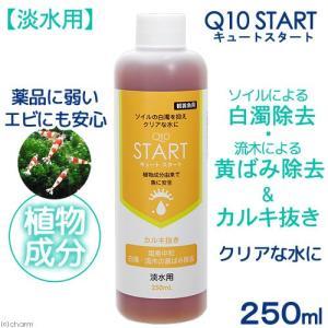 Q10スタート 淡水用 250mL 植物由来 白濁除去(エビに優しいカルキ抜き) 関東当日便|chanet