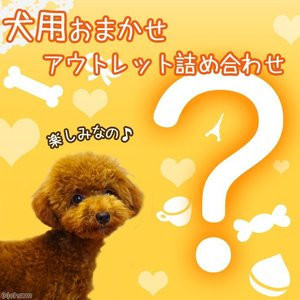 アウトレット 犬用いろいろ詰め合わせ お楽しみ599円セット 犬用 関東当日便|chanet