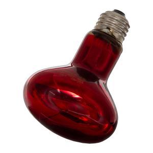 ZOOMED 赤外線保温電球 インフラレッドヒートランプ 100W 爬虫類 保温球
