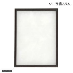 シーラ箱 スリム 昆虫 標本用品 標本箱 関東当日便|chanet