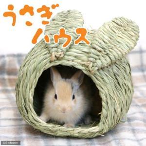 川井 KAWAI うさぎハウス S 関東当日便|chanet