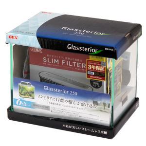 GEX グラステリア250水槽 水槽6点セット 水槽セット 初心者 お一人様2点限り