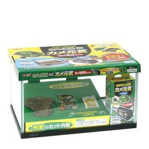 GEX カメの楽園 450 カメ元気 カメ飼育セット 水槽セット ジェックス 関東当日便
