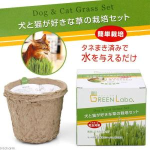 Konoko ペットグラス 犬と猫が好きな草 栽培セット 猫草 関東当日便|chanet