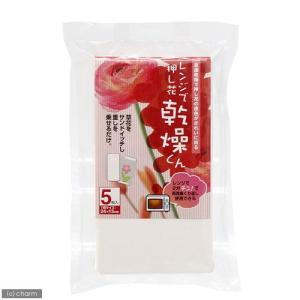 レンジで押し花乾燥くん 5枚入 関東当日便|chanet