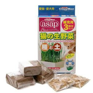 キャティーマン 猫の生野菜種と土 補充用3回分セット 猫草 ドギーマン 関東当日便|chanet