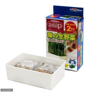 キャティーマン asap 猫の生野菜 2回分 猫草 ドギーマン 関東当日便|chanet