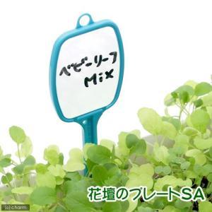 アウトレット品 花壇のプレート SA 訳あり 関東当日便 chanet