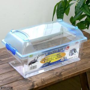 三晃商会 SANKO CLEAN CASE FLAT クリーンケースフラット(L)(375×220×...