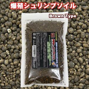 エボリューション 爆殖シュリンプソイル ブラウン 200cc 熱帯魚 用品