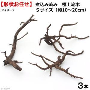 形状お任せ 煮込み済み 極上流木 Sサイズ(約10〜20cm)3本