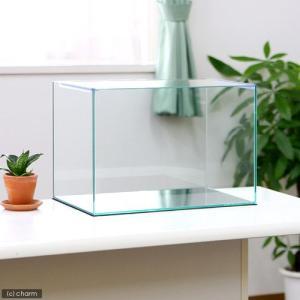 45cm水槽(単体)アクロ45N(45×27×30cm) オールガラス水槽 Aqullo アクアリウム用品 お一人様1点限り 関東当日便|chanet