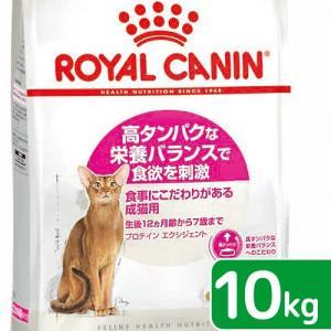 ロイヤルカナン FHN エクシジェント42 成猫用 10kg 正規品 3182550767231 お一人様5点限り 関東当日便