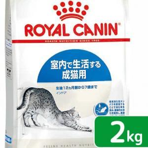 ロイヤルカナン 猫 インドア 成猫用 2kg 3182550704625 お一人様5点限り|chanet