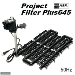 プロジェクトフィルター プラス645 50Hz(東日本用) 60cm水槽用底面フィルター 関東当日便|chanet