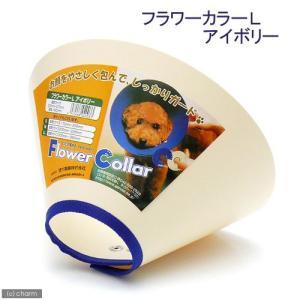 現代製薬 フラワーカラー L アイボリー 関東当日便|chanet