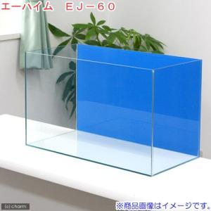 バックスクリーン貼付済 お一人様1点限り エーハイム EJ−60 水槽 アクアブルー(60×30×3...