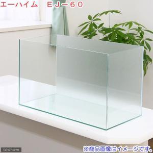バックスクリーン貼付済 エーハイム EJ−60 60cm水槽 サンド(60×30×36cm)(単体)...