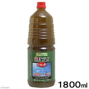 日本動物薬品 ニチドウ たね水 1.8リットル 光合成細菌 バクテリア 熱帯魚 観賞魚 関東当日便|chanet