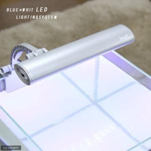 テトラ LEDミニライト LED−MINI 小型水槽用照明 熱帯魚 水草 関東当日便