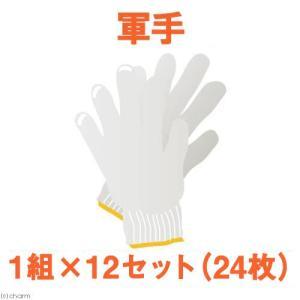 日本一軍手 NO.550 1組×12セット(24枚) 関東当日便 chanet