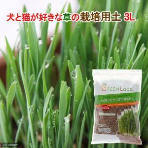 犬と猫が好きな草の栽培用土 3L 猫草 関東当日便|chanet