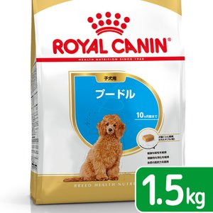 ロイヤルカナン プードル 子犬用 1.5kg 正規品 3182550765213 関東当日便|chanet