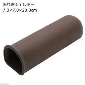 隠れ家シェルター 7.0×7.0×20.0cm 小型プレコ シュリンプ