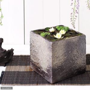 国産 手作り睡蓮鉢 益子焼 彩(SAI) 角 粗目 こげ茶 直径18cm ビオトープ 関東当日便|chanet