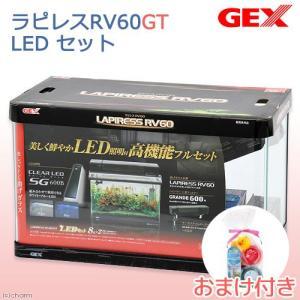 50Hz/60Hz共用 GEX ラピレスRV60GT LEDセット 水槽セット+チャームよりすぐりおまけ 初心者 沖縄別途送料 関東当日便