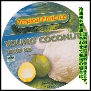 coconut ココナッツアイス|chankrung-store