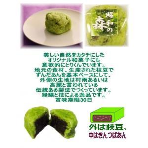 昭和の森|chanoko