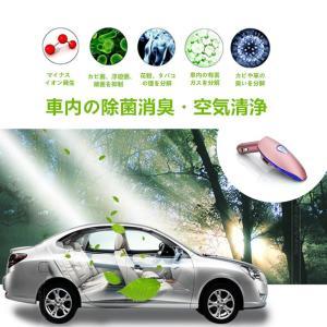 CHAOYILIU 車載空気清浄器 イオン発生器 脱臭機 除菌消臭 シガーソケット取り付け型 2USBポート付 12V車専用 (ピンク)|chaoyiliu