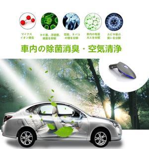 CHAOYILIU 車載空気清浄器 イオン発生器 脱臭機 除菌消臭 シガーソケット取り付け型 2USBポート付 12V車専用 (グレー)|chaoyiliu