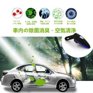 CHAOYILIU 車載空気清浄器 イオン発生器 脱臭機 除菌消臭 シガーソケット取り付け型 2USBポート付 12V車専用 (ブラック)|chaoyiliu