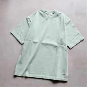 alvana Tシャツ アルヴァナ  アルティメイトハードTシャツ ULTIMATE HARD TEE SHIRTS ライムグリーン LIME GREEN 2021春夏新作 charger