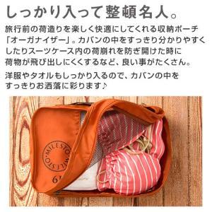 オーガナイザー 6L トラベルバッグ セカンドバッグ ビジネスバッグ かばん ポーチ バックインバック|charisma-bon|05