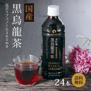 黒烏龍茶 国産 ペットボトル 1ケース 送料無料 500ml×24本 高ポリフェノール ウーロン茶